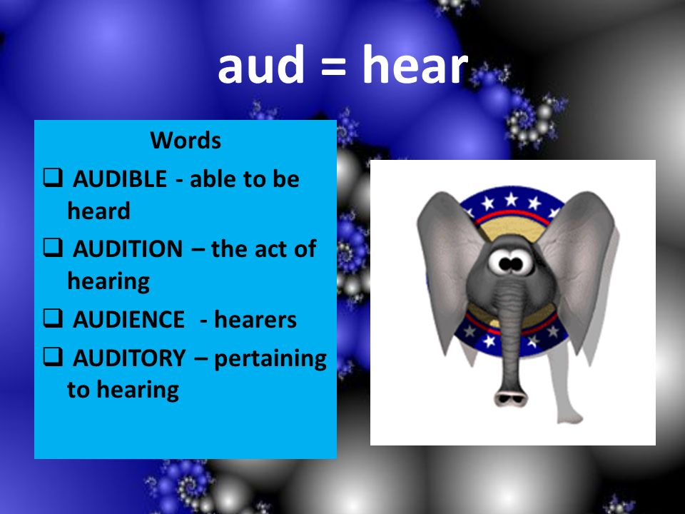 aud = hear Words AUDIBLE - able to be heard AUDITION – the act of hearing AUDIENCE - hearers AUDITORY – pertaining to hearing