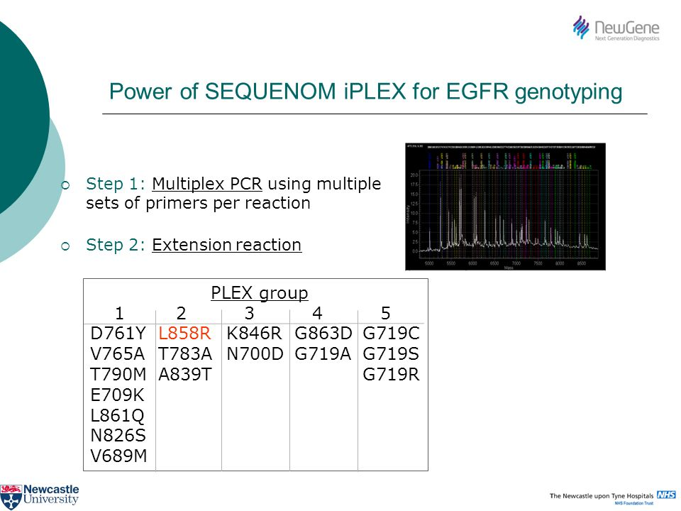 Power of SEQUENOM iPLEX for EGFR genotyping Step 1: Multiplex PCR using multiple sets of primers per reaction Step 2: Extension reaction PLEX group 1