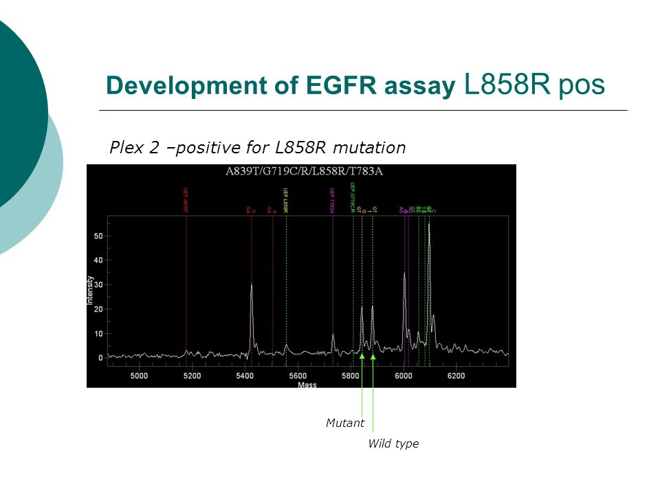 Development of EGFR assay L858R pos Plex 2 –positive for L858R mutation Wild type Mutant