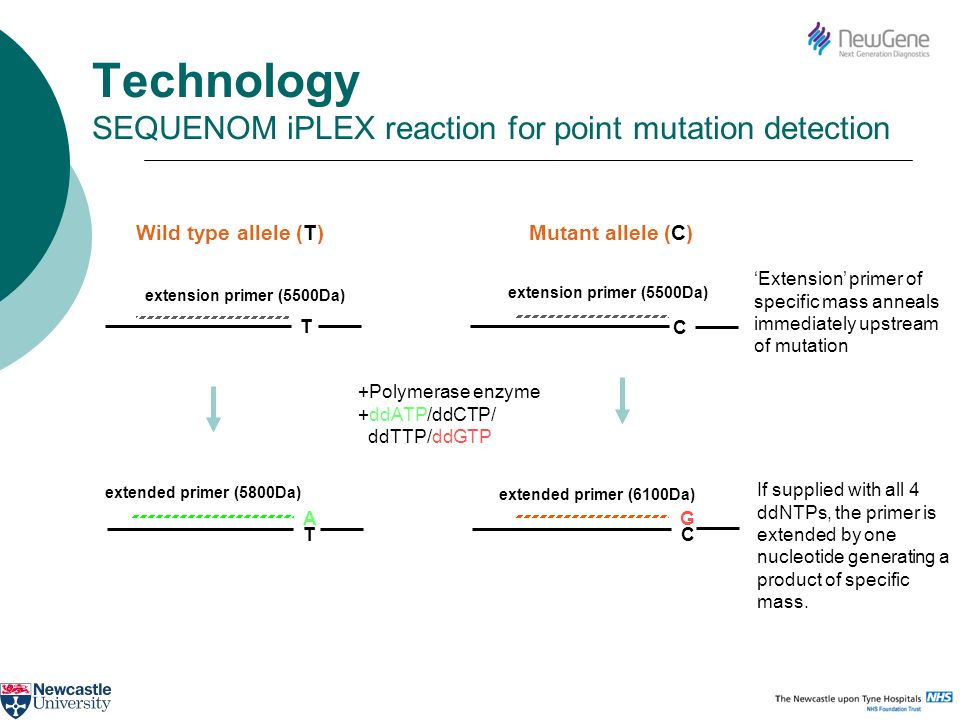 Technology SEQUENOM iPLEX reaction for point mutation detection Extension primer of specific mass anneals immediately upstream of mutation If supplied