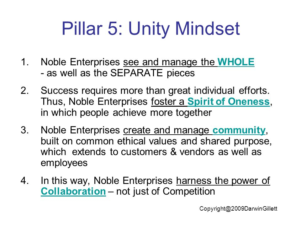 Pillar 5: Unity Mindset 1.Noble Enterprises see and manage the WHOLE - as well as the SEPARATE pieces 2.Success requires more than great individual efforts.