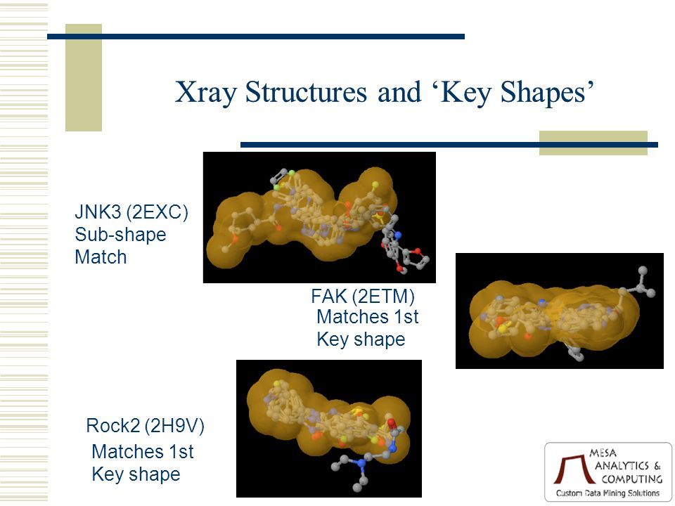 Xray Structures and Key Shapes Rock2 (2H9V) Matches 1st Key shape FAK (2ETM) Matches 1st Key shape JNK3 (2EXC) Sub-shape Match
