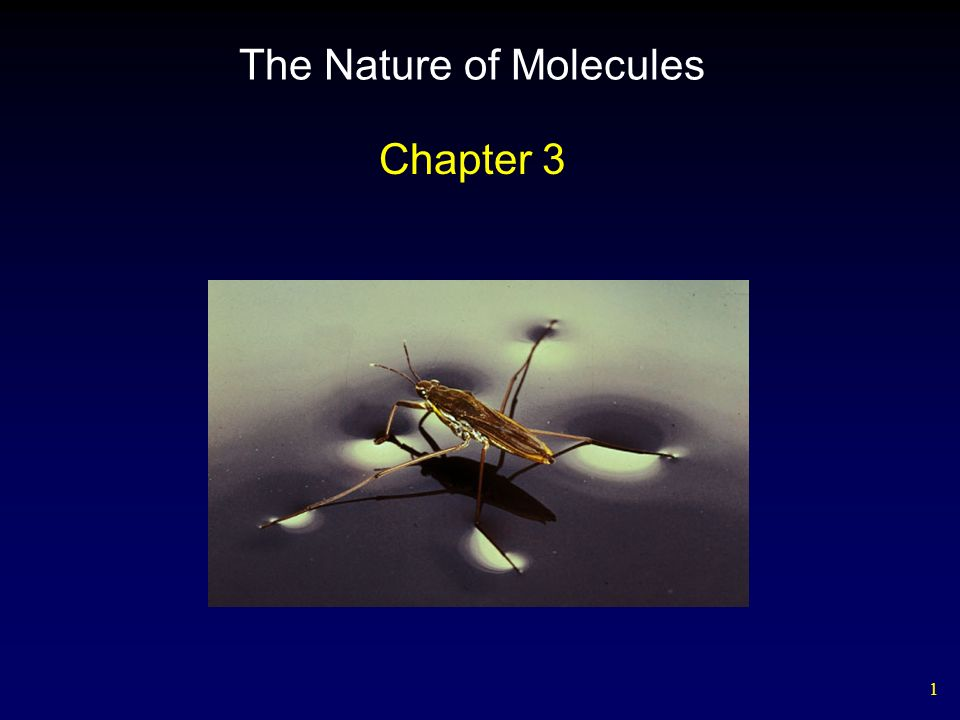 1 The Nature of Molecules Chapter 3