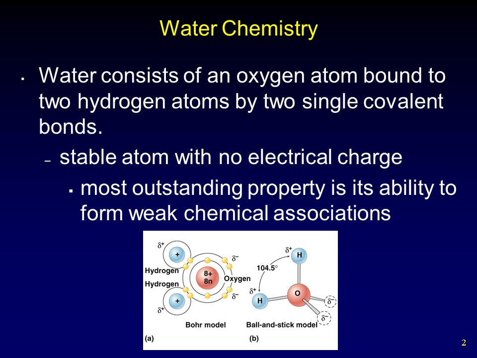 2 Water Chemistry Water consists of an oxygen atom bound to two hydrogen atoms by two single covalent bonds. – stable atom with no electrical charge m