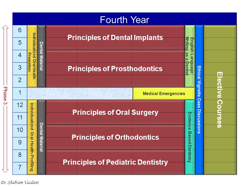 7 8 9 10 11 12 1 2 3 4 5 6 Fourth Year Principles of Prosthodontics Principles of Oral Surgery Medical Emergencies Phase 3 Principles of Orthodontics Individualized Oral Health Profiling Individualized Oral Health Promotion Elective Courses English Language: Writing as a Dentist Evidence Based Dentistry Principles of Pediatric Dentistry Principles of Dental Implants Ethical Vignette Case Discussions Dental Material Dr.