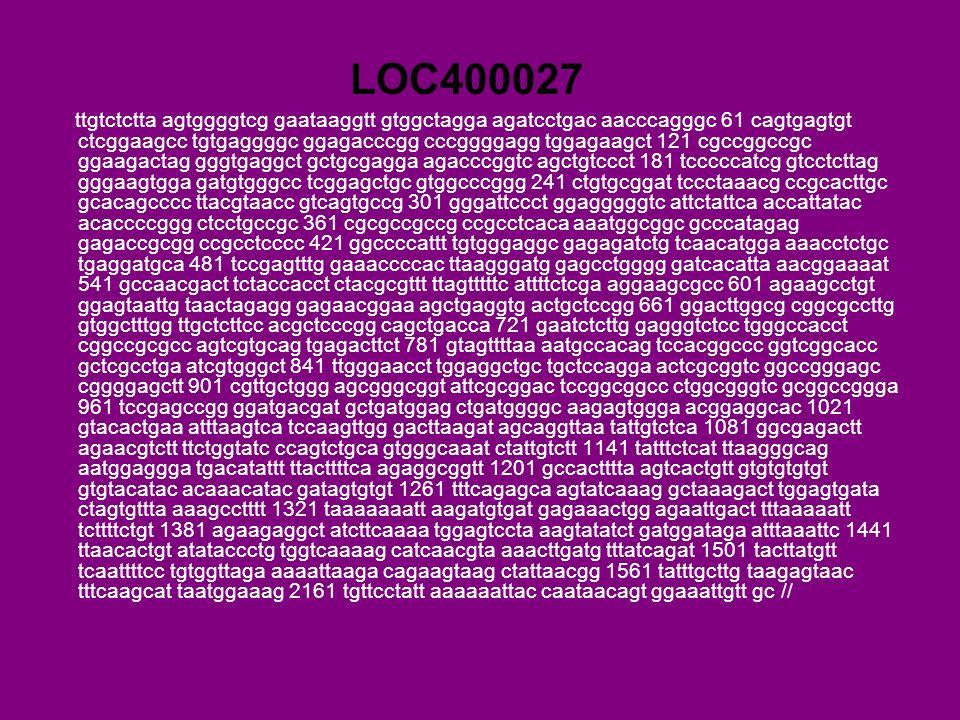 LOC400027 ttgtctctta agtggggtcg gaataaggtt gtggctagga agatcctgac aacccagggc 61 cagtgagtgt ctcggaagcc tgtgaggggc ggagacccgg cccggggagg tggagaagct 121 cgccggccgc ggaagactag gggtgaggct gctgcgagga agacccggtc agctgtccct 181 tcccccatcg gtcctcttag gggaagtgga gatgtgggcc tcggagctgc gtggcccggg 241 ctgtgcggat tccctaaacg ccgcacttgc gcacagcccc ttacgtaacc gtcagtgccg 301 gggattccct ggagggggtc attctattca accattatac acaccccggg ctcctgccgc 361 cgcgccgccg ccgcctcaca aaatggcggc gcccatagag gagaccgcgg ccgcctcccc 421 ggccccattt tgtgggaggc gagagatctg tcaacatgga aaacctctgc tgaggatgca 481 tccgagtttg gaaaccccac ttaagggatg gagcctgggg gatcacatta aacggaaaat 541 gccaacgact tctaccacct ctacgcgttt ttagtttttc attttctcga aggaagcgcc 601 agaagcctgt ggagtaattg taactagagg gagaacggaa agctgaggtg actgctccgg 661 ggacttggcg cggcgccttg gtggctttgg ttgctcttcc acgctcccgg cagctgacca 721 gaatctcttg gagggtctcc tgggccacct cggccgcgcc agtcgtgcag tgagacttct 781 gtagttttaa aatgccacag tccacggccc ggtcggcacc gctcgcctga atcgtgggct 841 ttgggaacct tggaggctgc tgctccagga actcgcggtc ggccgggagc cggggagctt 901 cgttgctggg agcgggcggt attcgcggac tccggcggcc ctggcgggtc gcggccggga 961 tccgagccgg ggatgacgat gctgatggag ctgatggggc aagagtggga acggaggcac 1021 gtacactgaa atttaagtca tccaagttgg gacttaagat agcaggttaa tattgtctca 1081 ggcgagactt agaacgtctt ttctggtatc ccagtctgca gtgggcaaat ctattgtctt 1141 tatttctcat ttaagggcag aatggaggga tgacatattt ttacttttca agaggcggtt 1201 gccactttta agtcactgtt gtgtgtgtgt gtgtacatac acaaacatac gatagtgtgt 1261 tttcagagca agtatcaaag gctaaagact tggagtgata ctagtgttta aaagcctttt 1321 taaaaaaatt aagatgtgat gagaaactgg agaattgact tttaaaaatt tcttttctgt 1381 agaagaggct atcttcaaaa tggagtccta aagtatatct gatggataga atttaaattc 1441 ttaacactgt atataccctg tggtcaaaag catcaacgta aaacttgatg tttatcagat 1501 tacttatgtt tcaattttcc tgtggttaga aaaattaaga cagaagtaag ctattaacgg 1561 tatttgcttg taagagtaac tttcaagcat taatggaaag 2161 tgttcctatt aaaaaattac caataacagt ggaaattgtt gc //