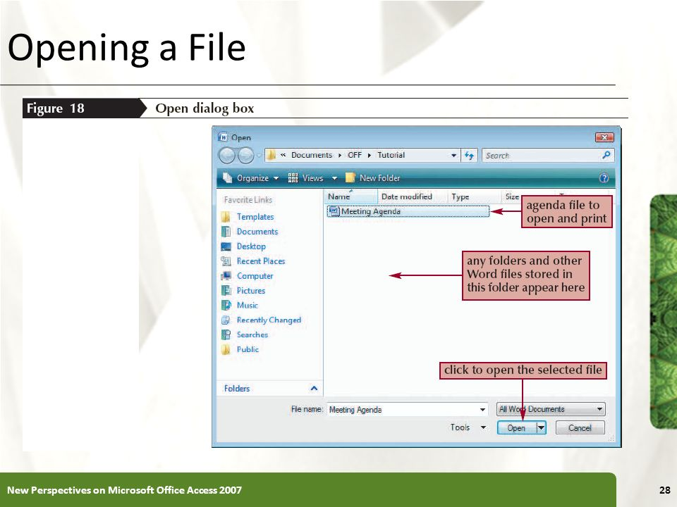 XP Opening a File 28New Perspectives on Microsoft Office Access 2007