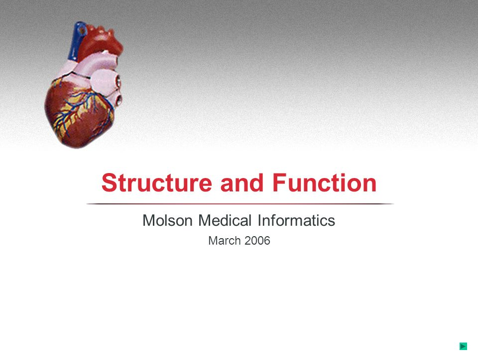 Structure and Function Molson Medical Informatics March 2006