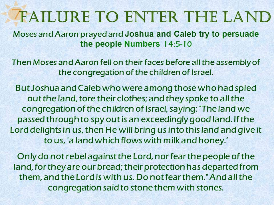 Moses and Aaron prayed and Joshua and Caleb try to persuade the people Numbers 14:5-10 Then Moses and Aaron fell on their faces before all the assembl