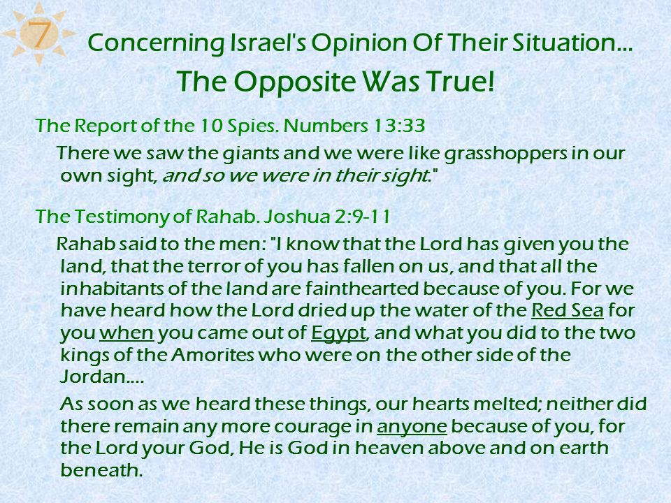 Concerning Israel's Opinion Of Their Situation… The Report of the 10 Spies. Numbers 13:33 There we saw the giants and we were like grasshoppers in our