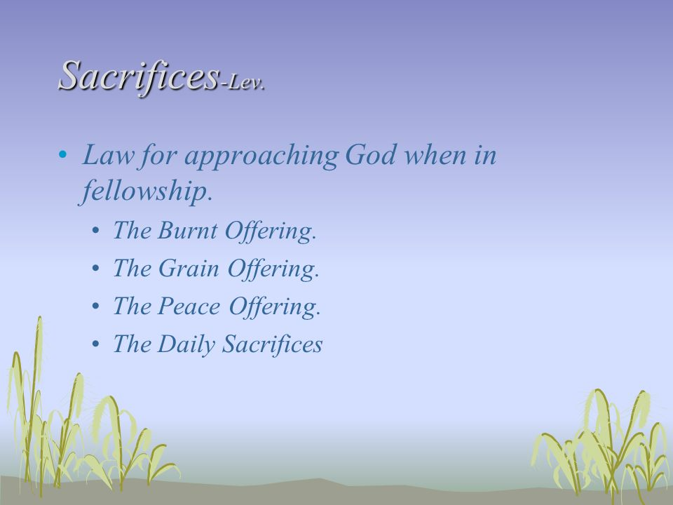 Sacrifices -Lev. Law for approaching God when in fellowship. The Burnt Offering. The Grain Offering. The Peace Offering. The Daily Sacrifices