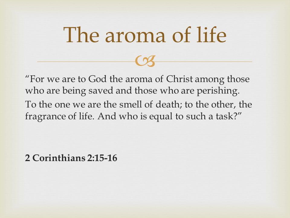 For we are to God the aroma of Christ among those who are being saved and those who are perishing.