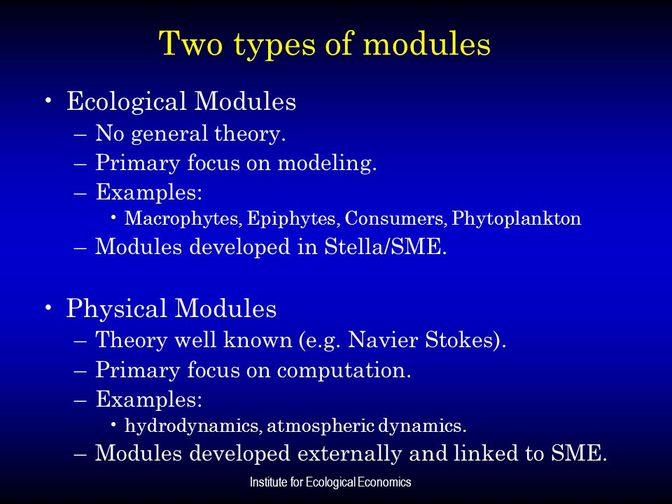 Institute for Ecological Economics Two types of modules Ecological Modules –No general theory. –Primary focus on modeling. –Examples: Macrophytes, Epi