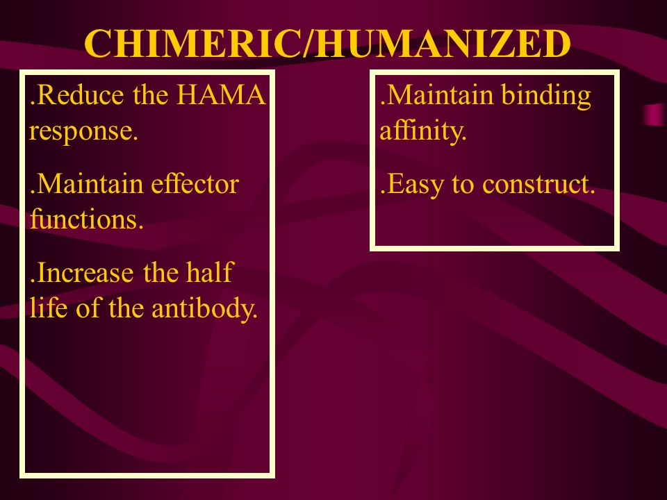 CHIMERIC/HUMANIZED.Reduce the HAMA response..Maintain effector functions..Increase the half life of the antibody..Maintain binding affinity..Easy to c