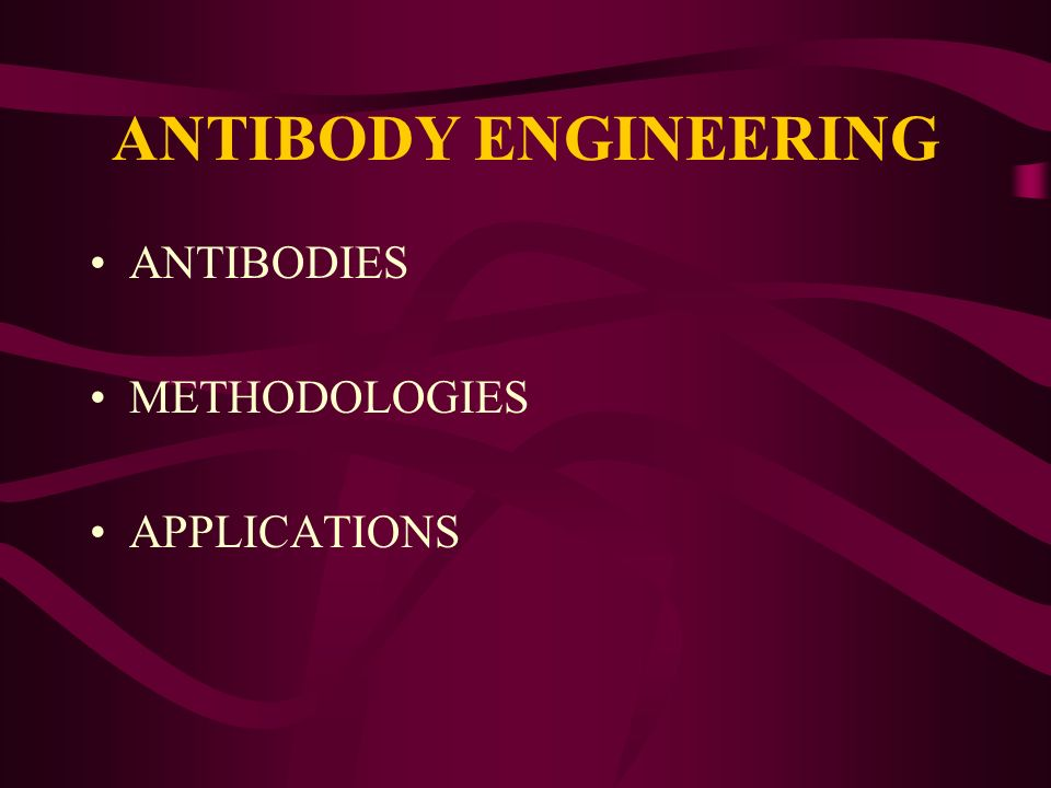ANTIBODY ENGINEERING ANTIBODIES METHODOLOGIES APPLICATIONS