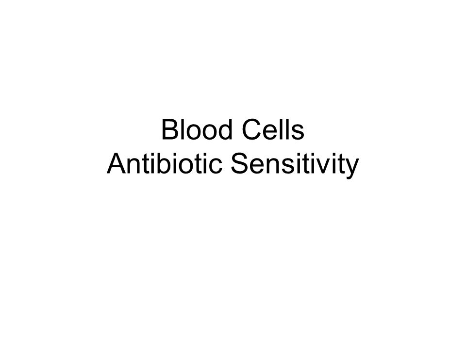 Blood Cells Antibiotic Sensitivity