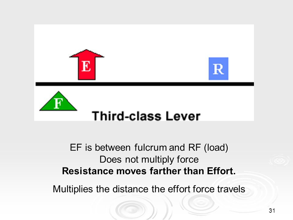 30 Third Class Lever With a third-class lever, the effort force is applied between the fulcrum and the resistance force. With a third-class lever, the