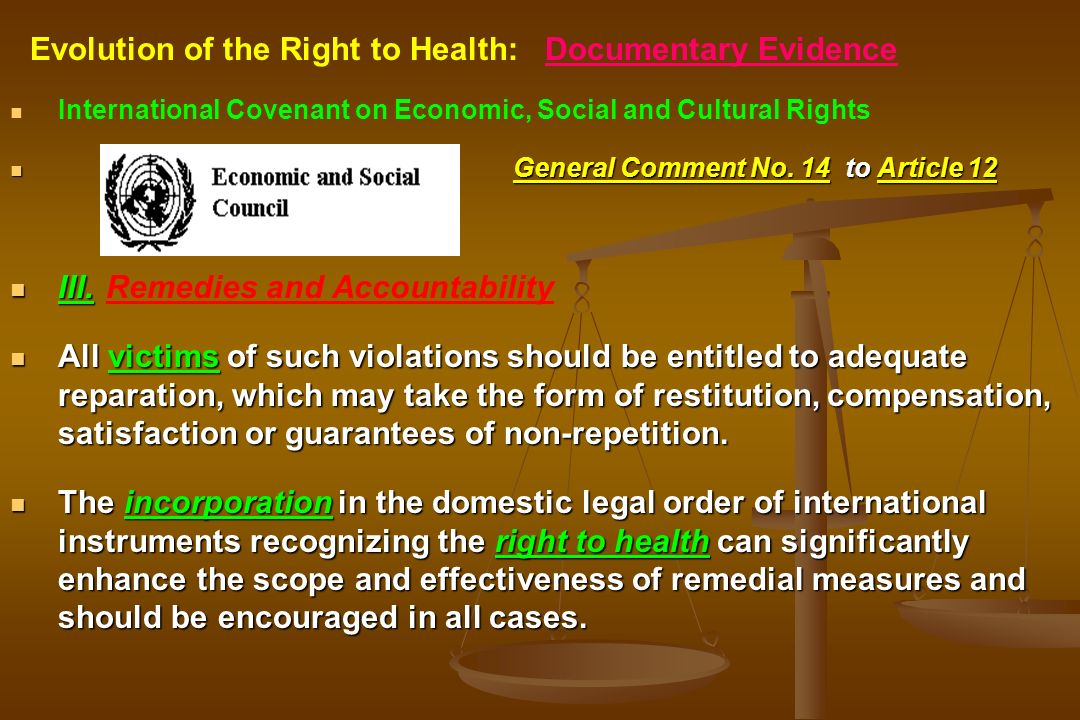 International Covenant on Economic, Social and Cultural Rights General Comment No. 14 to Article 12 III.Remedies and Accountability All victims of suc