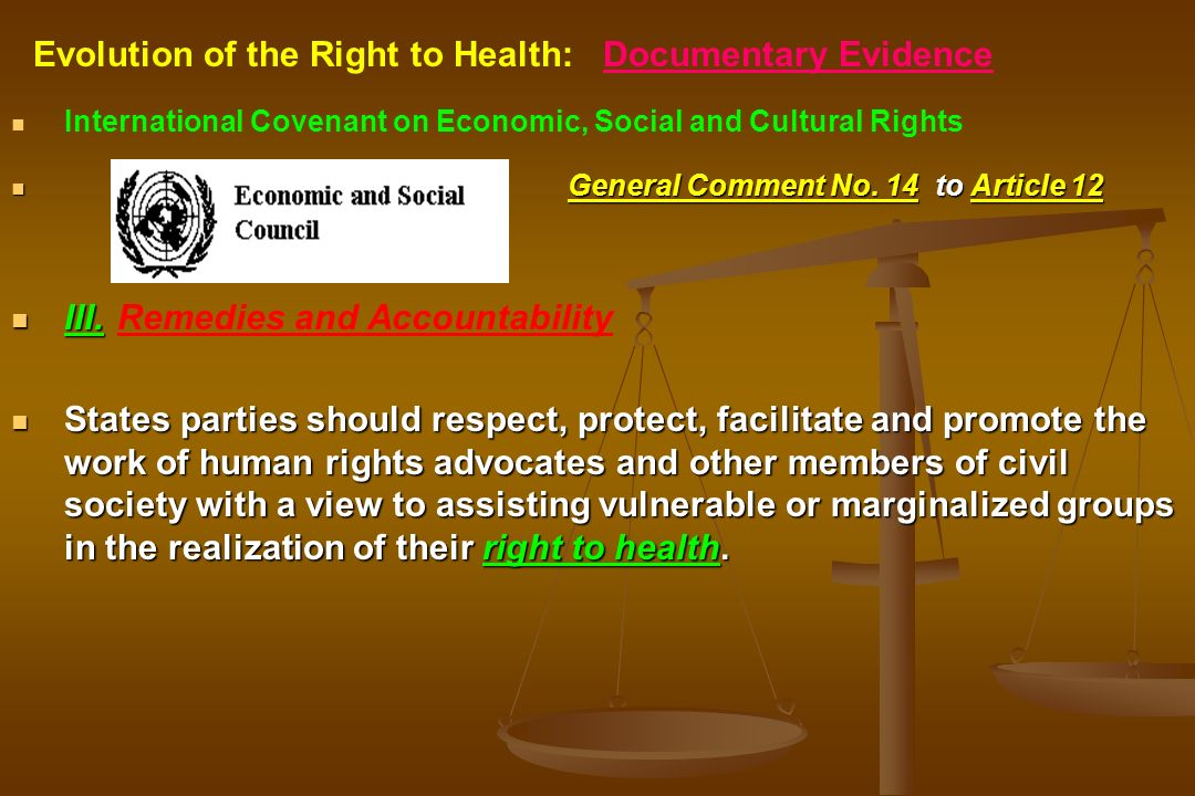 International Covenant on Economic, Social and Cultural Rights General Comment No. 14 to Article 12 III.Remedies and Accountability States parties sho
