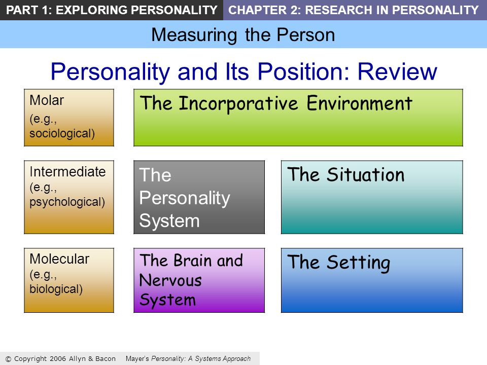 Measuring the Person © Copyright 2006 Allyn & Bacon Mayers Personality: A Systems Approach PART 1: EXPLORING PERSONALITYCHAPTER 2: RESEARCH IN PERSONALITY Personality and Its Position: Review Molar (e.g., sociological) The Incorporative Environment Intermediate (e.g., psychological) The Personality System The Situation Molecular (e.g., biological) The Brain and Nervous System The Setting