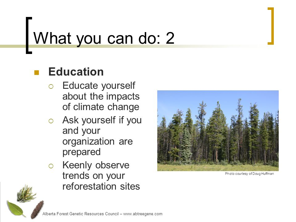 What you can do: 2 Education Educate yourself about the impacts of climate change Ask yourself if you and your organization are prepared Keenly observe trends on your reforestation sites Alberta Forest Genetic Resources Council – www.abtreegene.com Photo courtesy of Doug Huffman