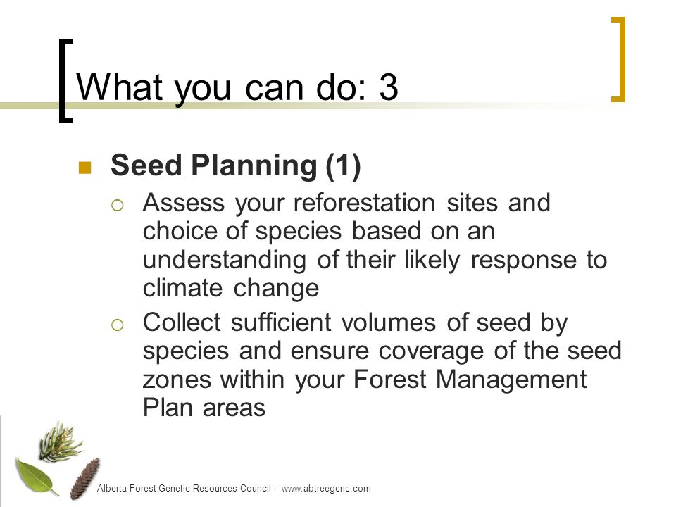 What you can do: 3 Seed Planning (1) Assess your reforestation sites and choice of species based on an understanding of their likely response to climate change Collect sufficient volumes of seed by species and ensure coverage of the seed zones within your Forest Management Plan areas Alberta Forest Genetic Resources Council – www.abtreegene.com