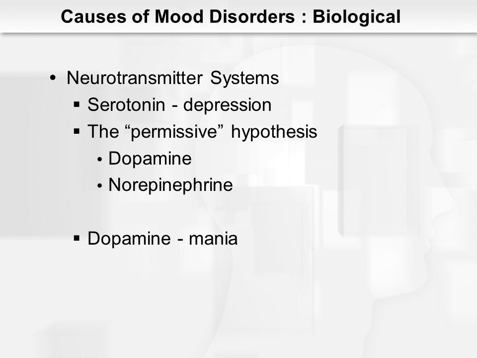 Neurotransmitter Systems Serotonin - depression The permissive hypothesis Dopamine Norepinephrine Dopamine - mania Causes of Mood Disorders : Biologic