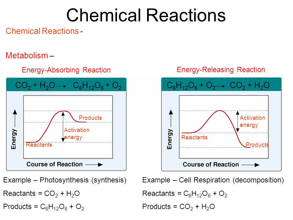 Energy-Absorbing Reaction Energy-Releasing Reaction Products Activation energy Activation energy Reactants Chemical Reactions Example – Photosynthesis