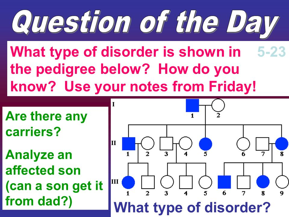 What type of disorder? What type of disorder is shown in the pedigree below? How do you know? Use your notes from Friday! 5-23 Are there any carriers?