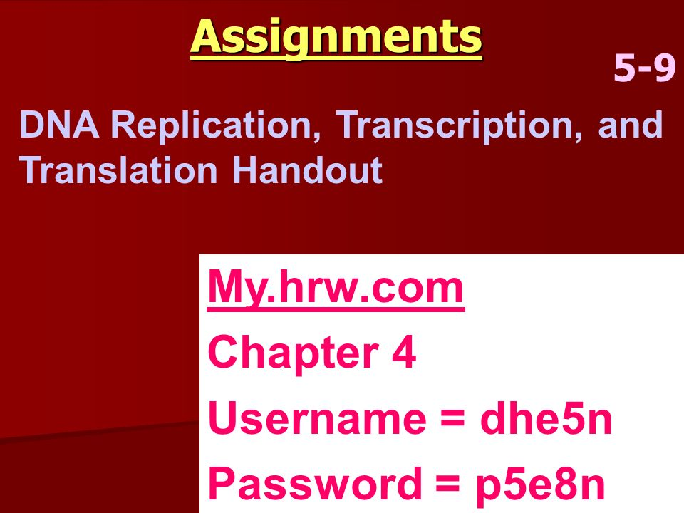 Assignments 5-9 DNA Replication, Transcription, and Translation Handout My.hrw.com Chapter 4 Username = dhe5n Password = p5e8n