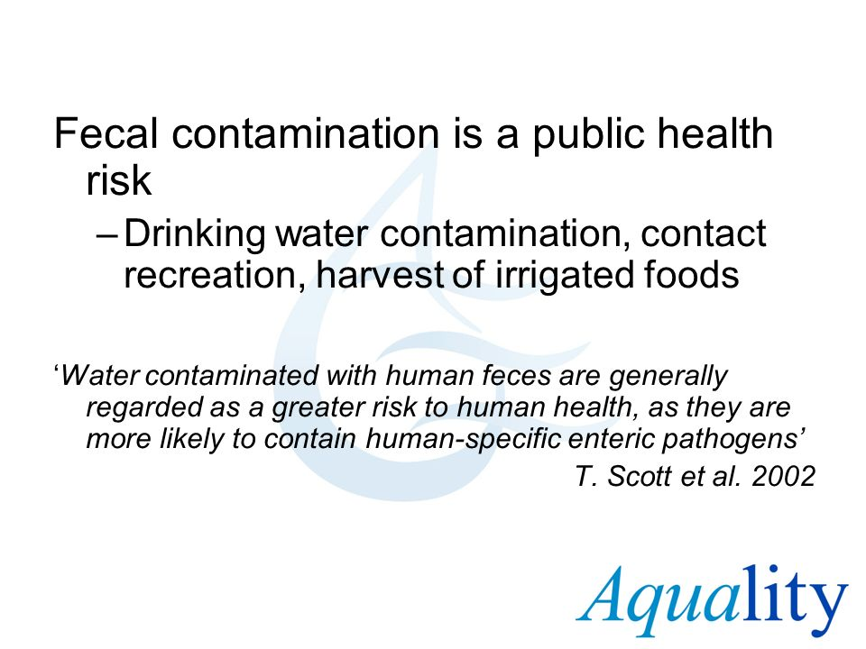 Fecal contamination is a public health risk –Drinking water contamination, contact recreation, harvest of irrigated foods Water contaminated with huma