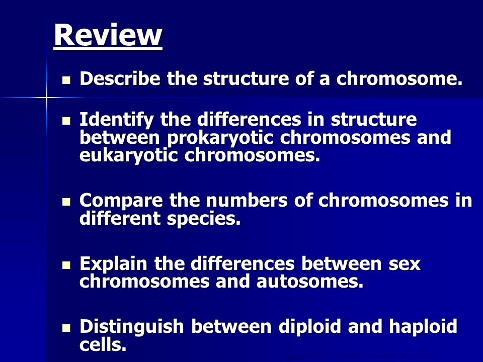 Copyright © by Holt, Rinehart and Winston. All rights reserved. Review Describe the structure of a chromosome. Describe the structure of a chromosome.