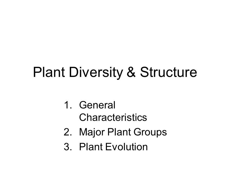 Plant Diversity & Structure 1.General Characteristics 2.Major Plant Groups 3.Plant Evolution