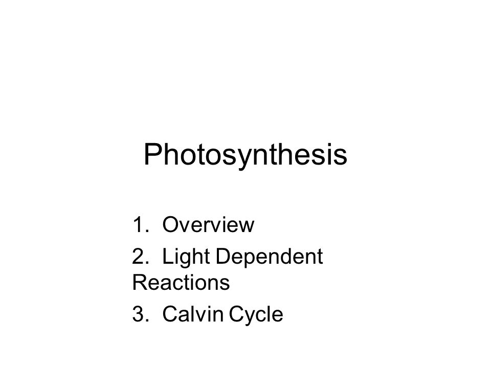 Photosynthesis 1. Overview 2. Light Dependent Reactions 3. Calvin Cycle