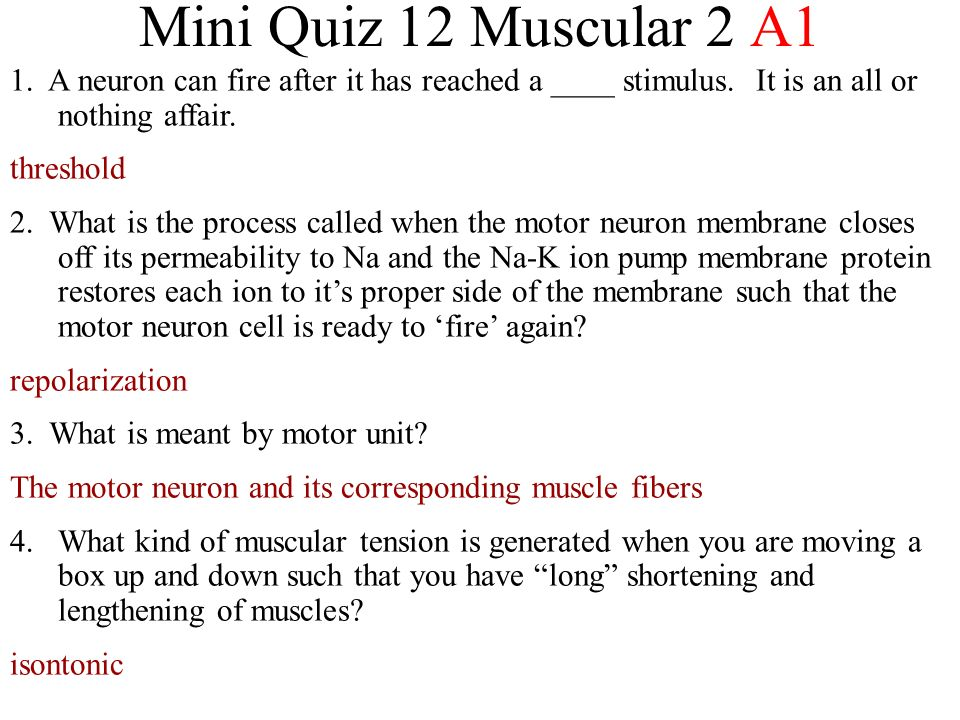 Mini Quiz 12 Muscular 2 A1 1. A neuron can fire after it has reached a ____ stimulus.