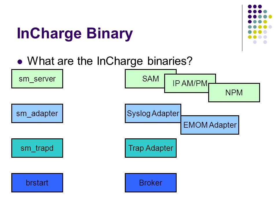 InCharge Binary What are the InCharge binaries? sm_serverSAM IP AM/PM NPM sm_adapter Trap Adapter Syslog Adapter EMOM Adapter sm_trapd brstartBroker