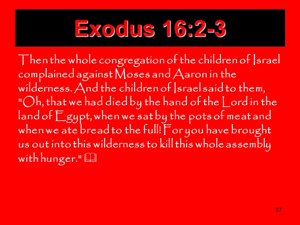 37 Exodus 16:2-3 Then the whole congregation of the children of Israel complained against Moses and Aaron in the wilderness. And the children of Israe