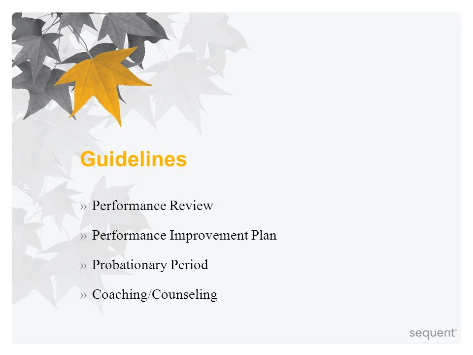 Guidelines »Performance Review »Performance Improvement Plan »Probationary Period »Coaching/Counseling