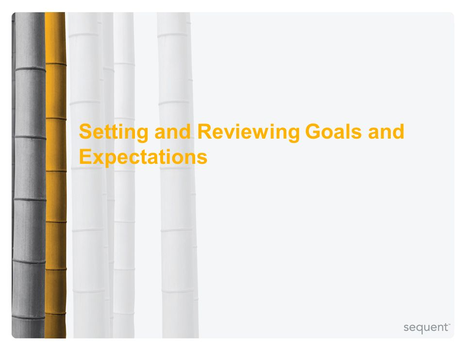 Setting and Reviewing Goals and Expectations