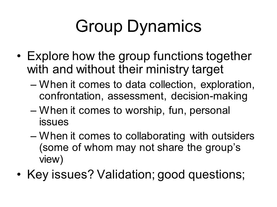 Group Dynamics Explore how the group functions together with and without their ministry target –When it comes to data collection, exploration, confrontation, assessment, decision-making –When it comes to worship, fun, personal issues –When it comes to collaborating with outsiders (some of whom may not share the groups view) Key issues.