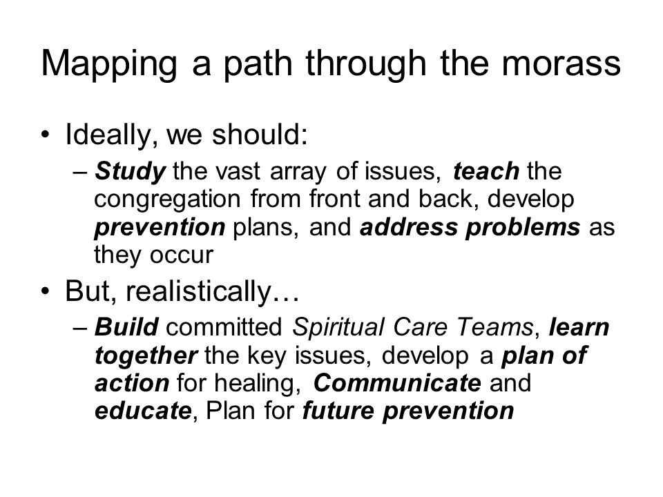 Mapping a path through the morass Ideally, we should: –Study the vast array of issues, teach the congregation from front and back, develop prevention plans, and address problems as they occur But, realistically… –Build committed Spiritual Care Teams, learn together the key issues, develop a plan of action for healing, Communicate and educate, Plan for future prevention