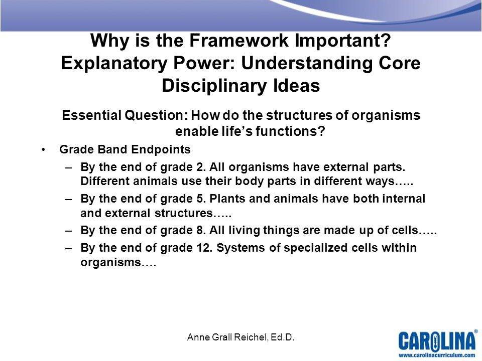 Why is the Framework Important? Explanatory Power: Understanding Core Disciplinary Ideas Essential Question: How do the structures of organisms enable