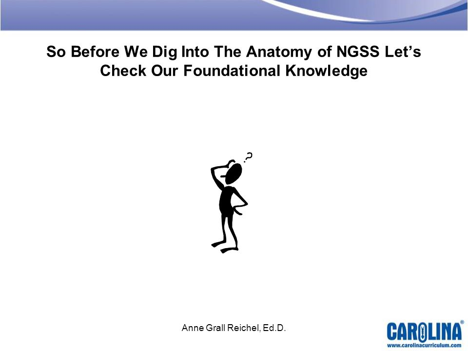 So Before We Dig Into The Anatomy of NGSS Lets Check Our Foundational Knowledge Anne Grall Reichel, Ed.D.