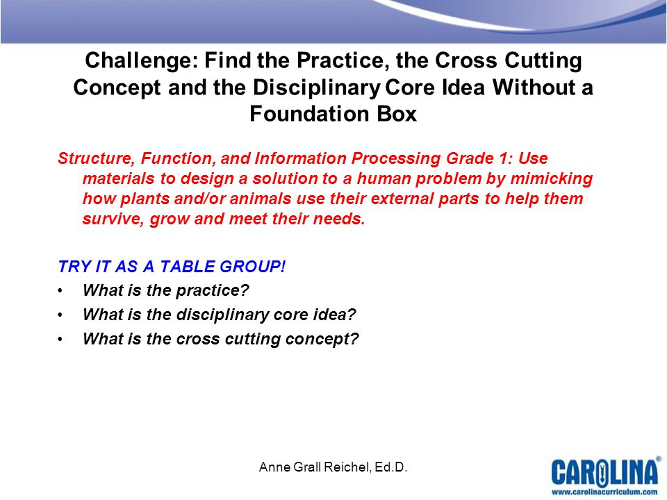 Challenge: Find the Practice, the Cross Cutting Concept and the Disciplinary Core Idea Without a Foundation Box Structure, Function, and Information P