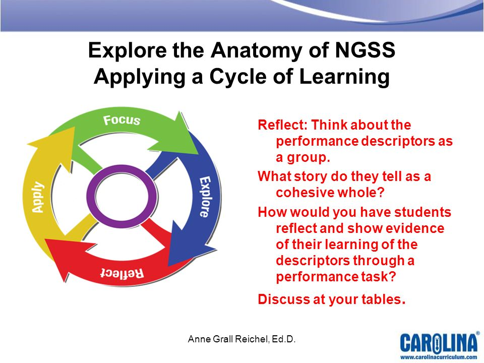 Explore the Anatomy of NGSS Applying a Cycle of Learning Reflect: Think about the performance descriptors as a group. What story do they tell as a coh