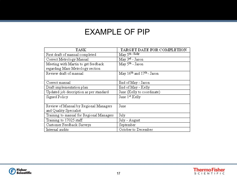 17 EXAMPLE OF PIP