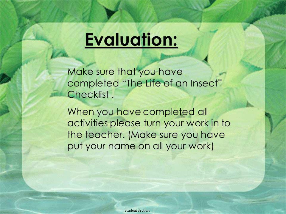Student Section Ladybug Links http://www.ivyhall.district96.k12.il.us/4TH/KKHP/1insects/bugmenu.html http://www.sidney.ars.usda.gov/sidebar/justforkid