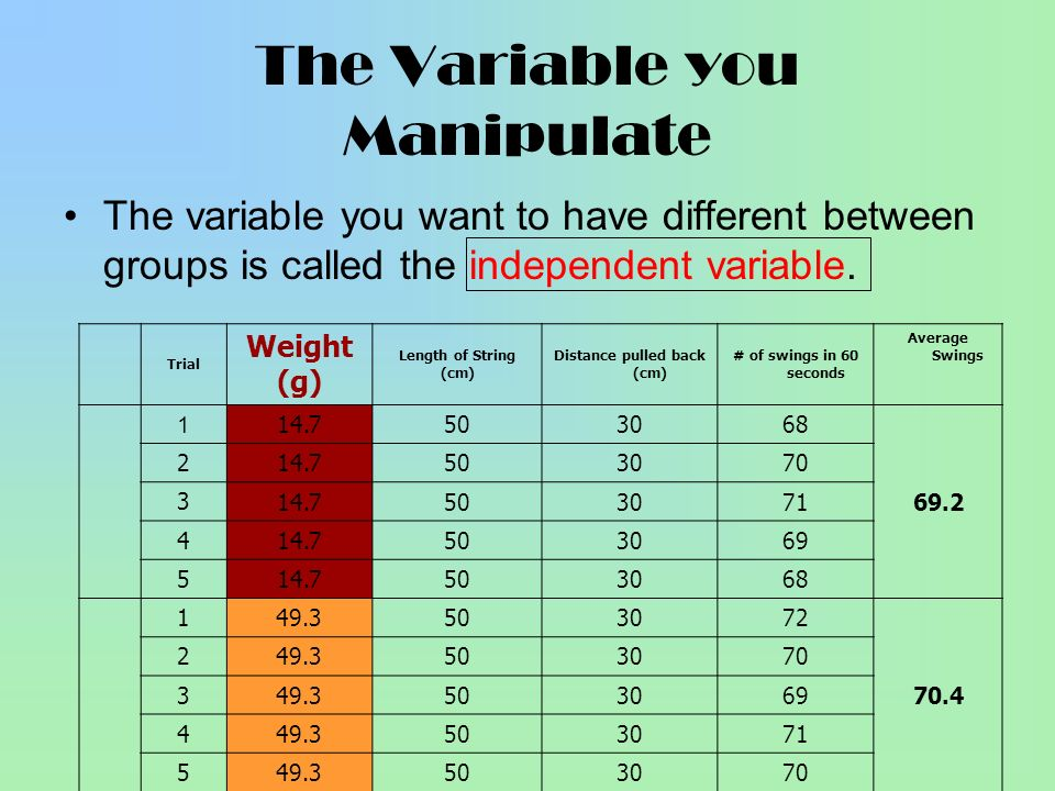The Variable you Manipulate The variable you want to have different between groups is called the independent variable. Trial Weight (g) Length of Stri
