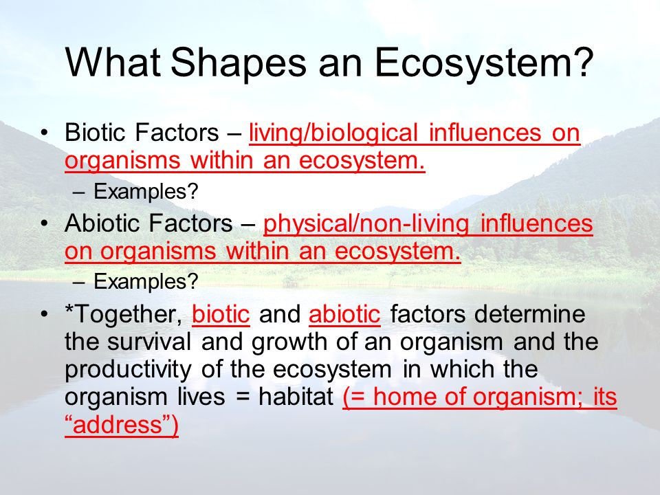 Biotic Factors – living/biological influences on organisms within an ecosystem. –Examples? Abiotic Factors – physical/non-living influences on organis