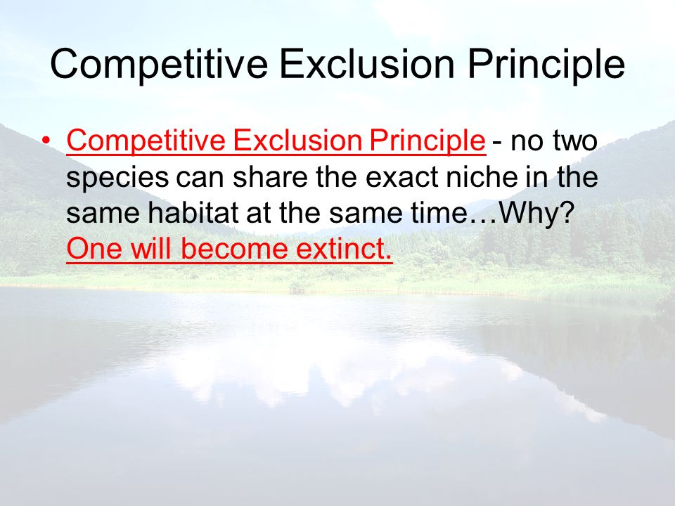 Competitive Exclusion Principle Competitive Exclusion Principle - no two species can share the exact niche in the same habitat at the same time…Why? O
